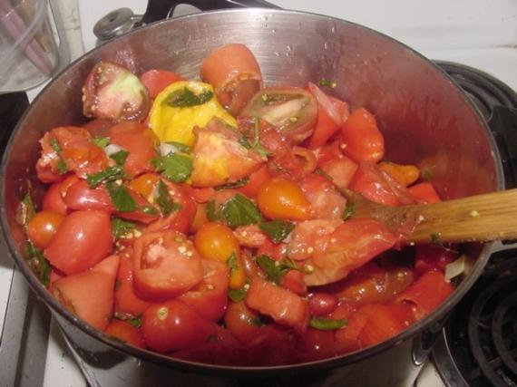 Last Tomatoes 2009
